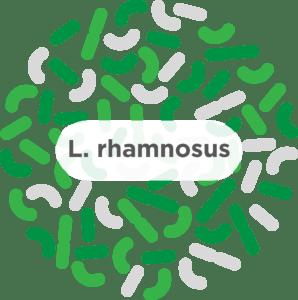 Lactobacillus rhamnosus