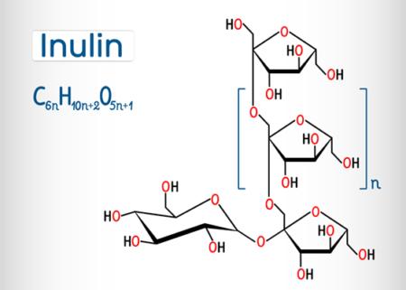 inulin prebiotikum
